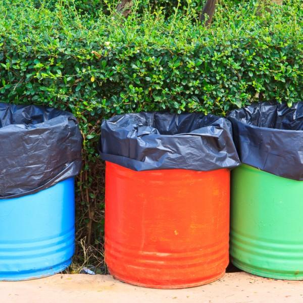 sentirse vivo colmena reciclaje